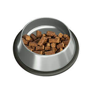 dogs bowl with rubber bottom