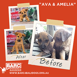 Before & After Ava & Amelia